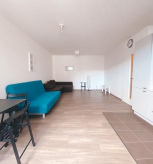 Pronájem bytu 1+kk, 47 m2 - Olgy Havlové, Praha 3