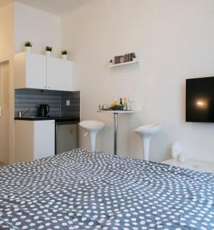 Pronájem bytu 1+kk, 21 m2 - Seifertova, Praha 3