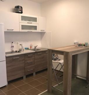 Pronájem bytu 1+kk, 38 m2 - Olgy Havlové